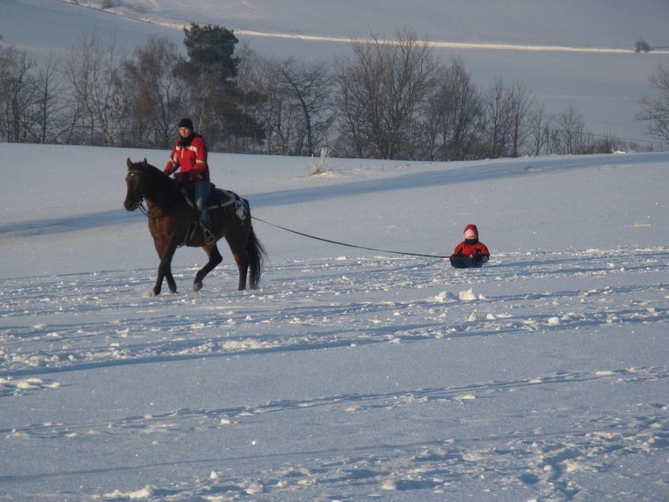 Jízdy na koni / Horse riding